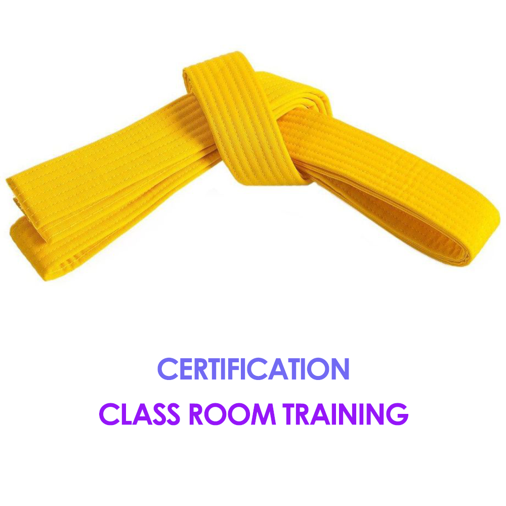 Six Sigma Yellow Belt Training And Certification Get Yellow Belt